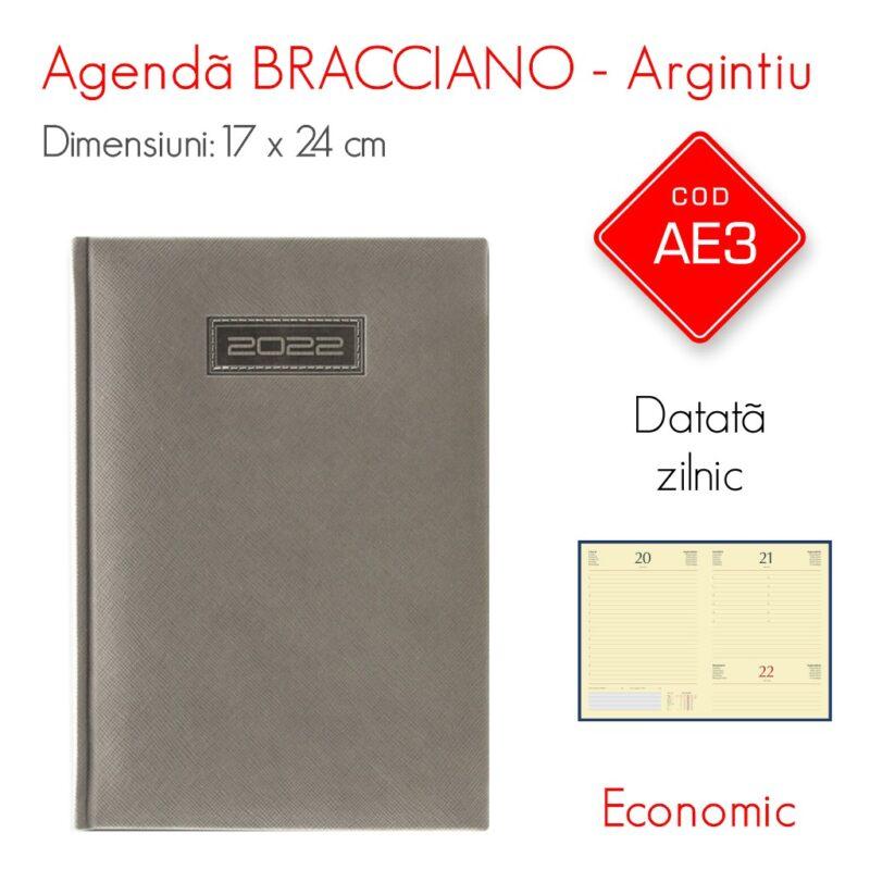 Agenda Economica BRACCIANO Argintie 17 x 24 Datata Zilnic