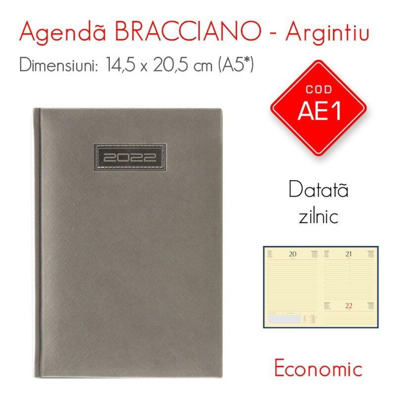 Agenda Economica BRACCIANO Argintie A5 Datata Zilnic