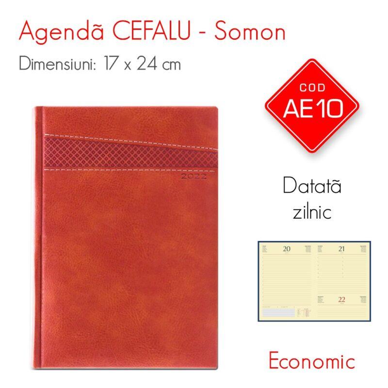 Agenda Economica CEFALU Somon 17x24 cm Datata Zilnic