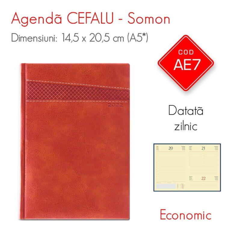 Agenda Economica CEFALU Somon A5 Datata Zilnic