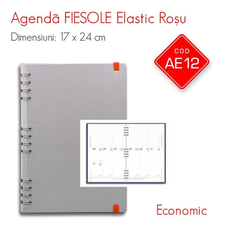 Agenda Economica FIESOLE Elastic Rosu 17×24 cm Datata Saptamanal – Interior